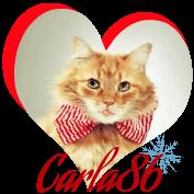 Carla86